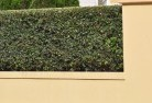 Orion Decorative fencing 30